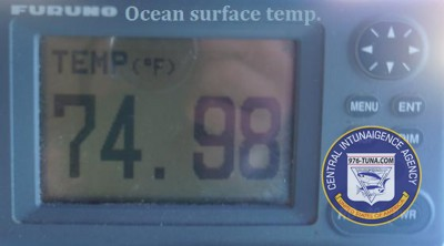 surface sea temp