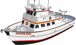 nativesun492038